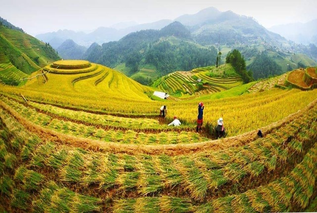 Mu Cang Chai, The Most Breathtaking Rice Terraces in Vietnam