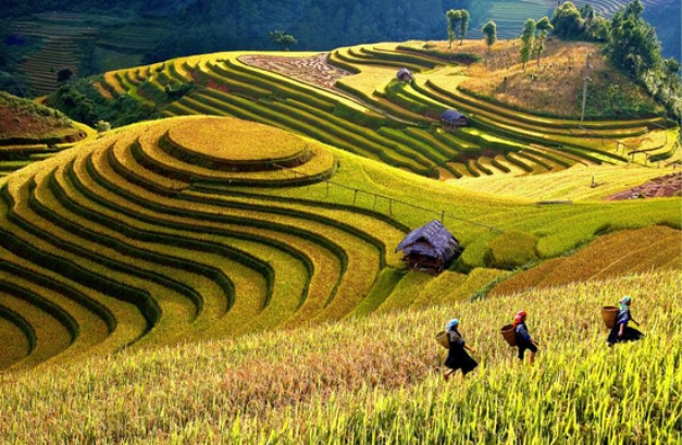 7 Day Northern Vietnam Tour